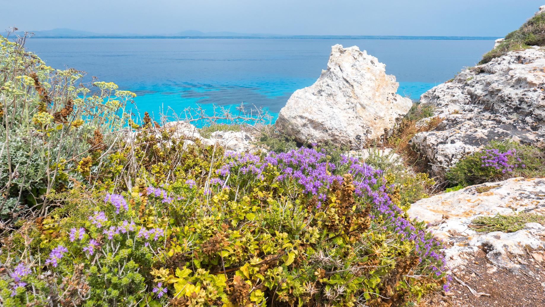 Island of Favignana, Trapani, Sicily,